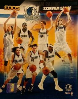 dallas mavericks 2003 team composite 8x10 photo